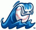 Michigan Whitecaps